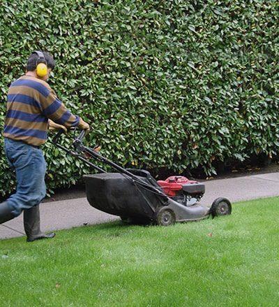 servicio de mantenimiento de jardines y espacios verdes en boadilla del monte, madrid